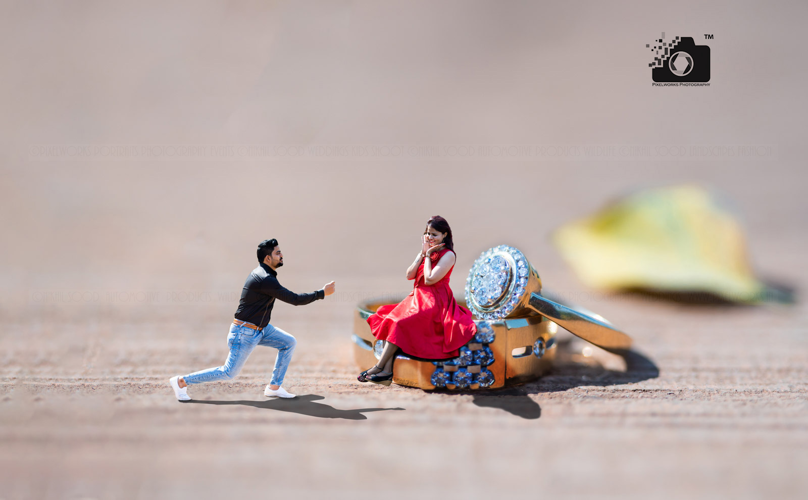 Pre wedding shoot ideas ring proposal