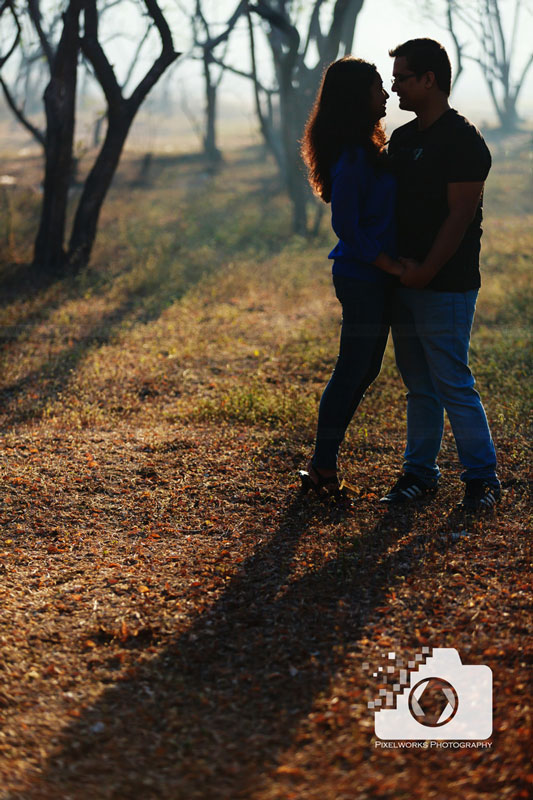 Forest pre wedding shoot